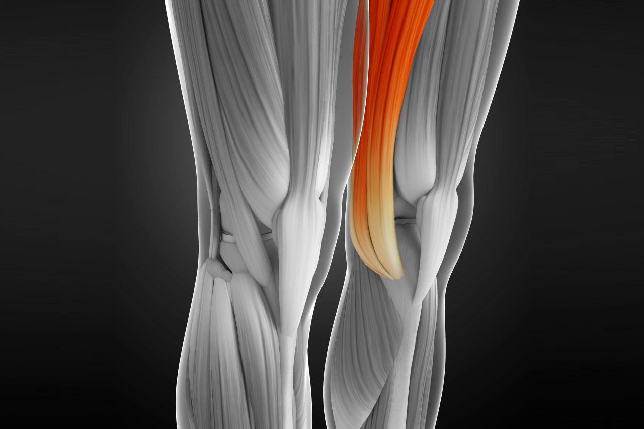 dolor en la parte interior de la rodilla al caminar